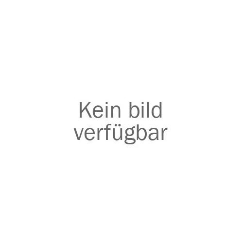Andrographis – Kalmegh Extrakt